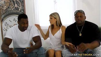 السود يتشاركون في نفس الهرة